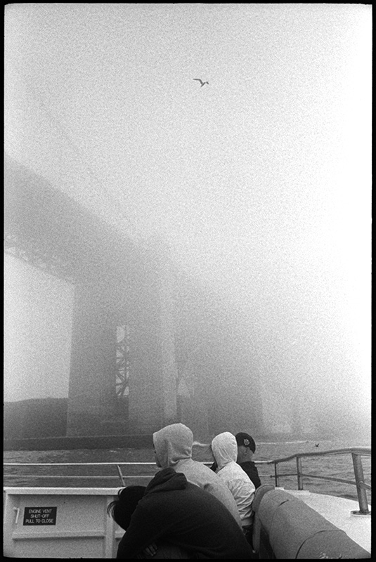 black and white photo, san francisco bay, golden gate bridge