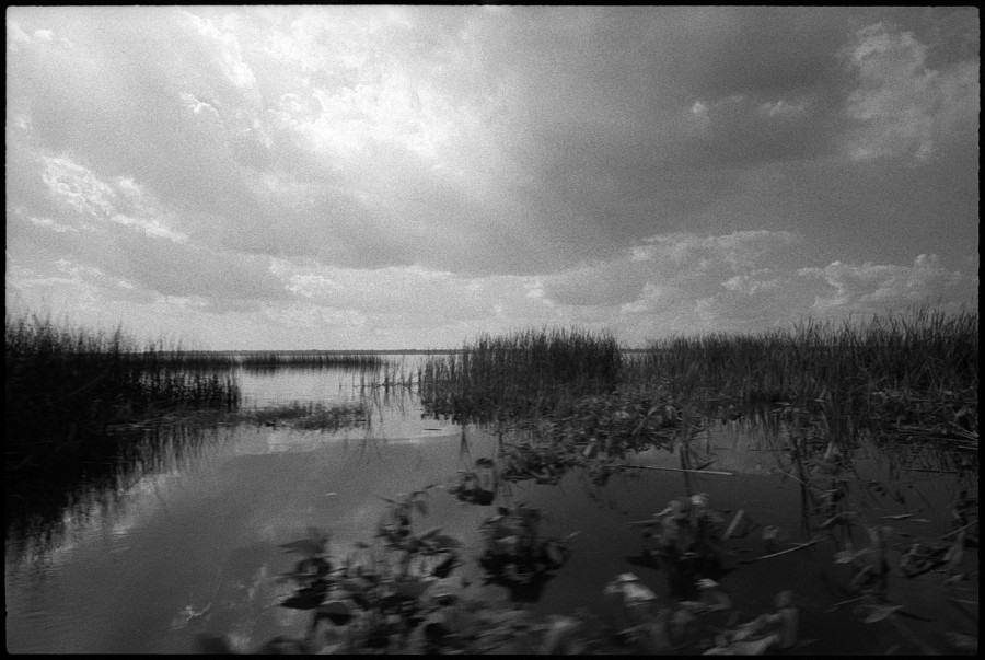 0347_03 Lake Trafford, South Florida