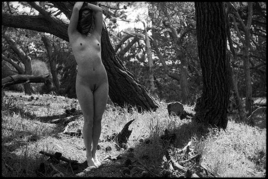 0354_12A Nude, San Francisco