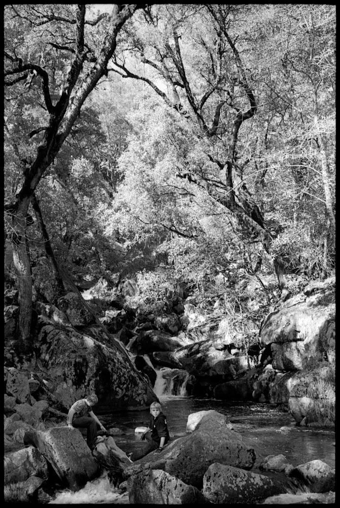 0427_30A Corlieu Falls, Oakhurst California