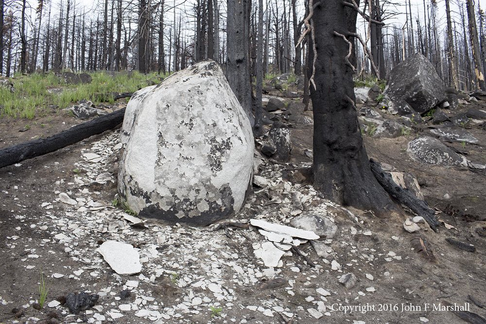 Fire has much to do with weathering, I think.  This granite boulder is exfoliating. The green-up of grass is inspirational.  Beaver Lake Fire 2015, 2016 photo