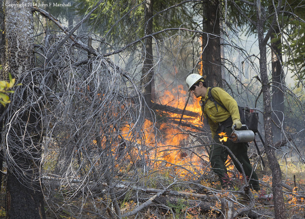 A member of the Chelan Initial Attack Crew putting fire on the ground.