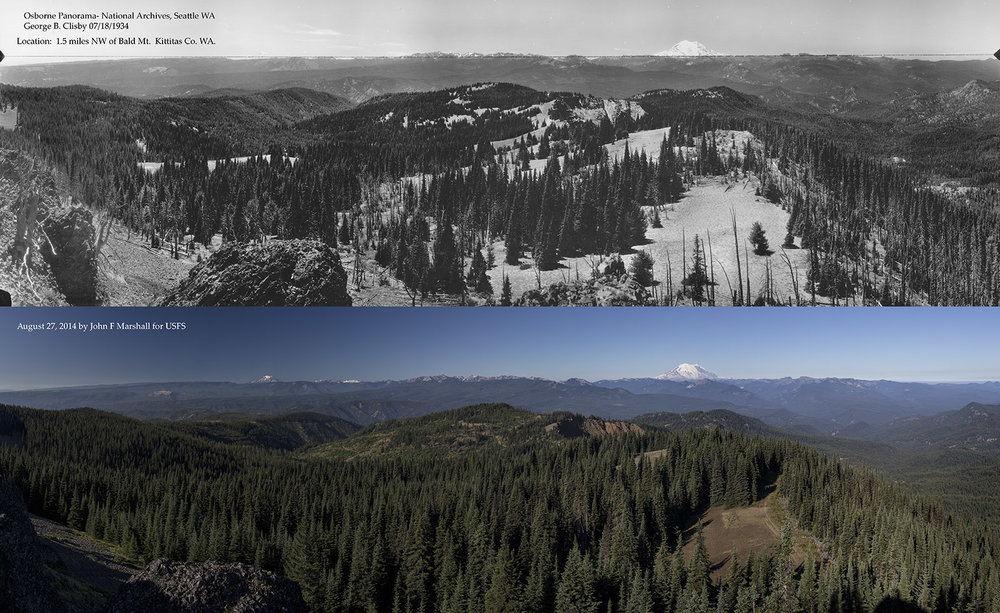Top Image by George Clisby, from National Archives and Records Administration, Seattle, Wa.  Bottom image by John F Marshall as funded by Okanogan-Wenatchee National Forest and Wenatchee Forestry Sciences Lab of Pacific NW Research Station.