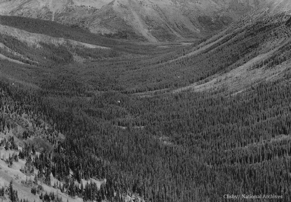 West Fork of Pasayten River drainage in 1934, as seen from Slate Peak