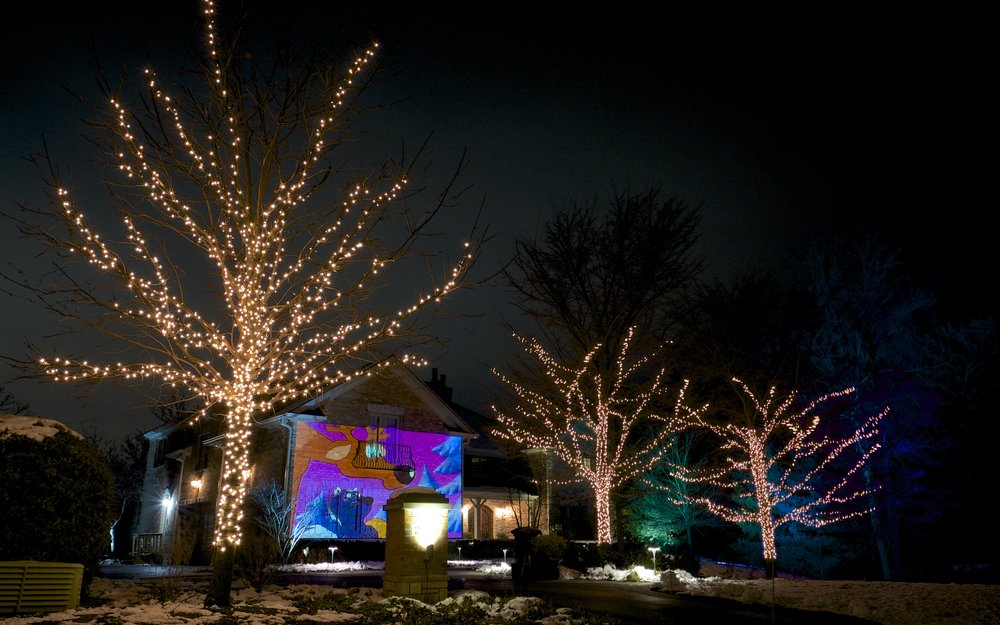 PROFESSIONALHOLIDAYLIGHTING.COM