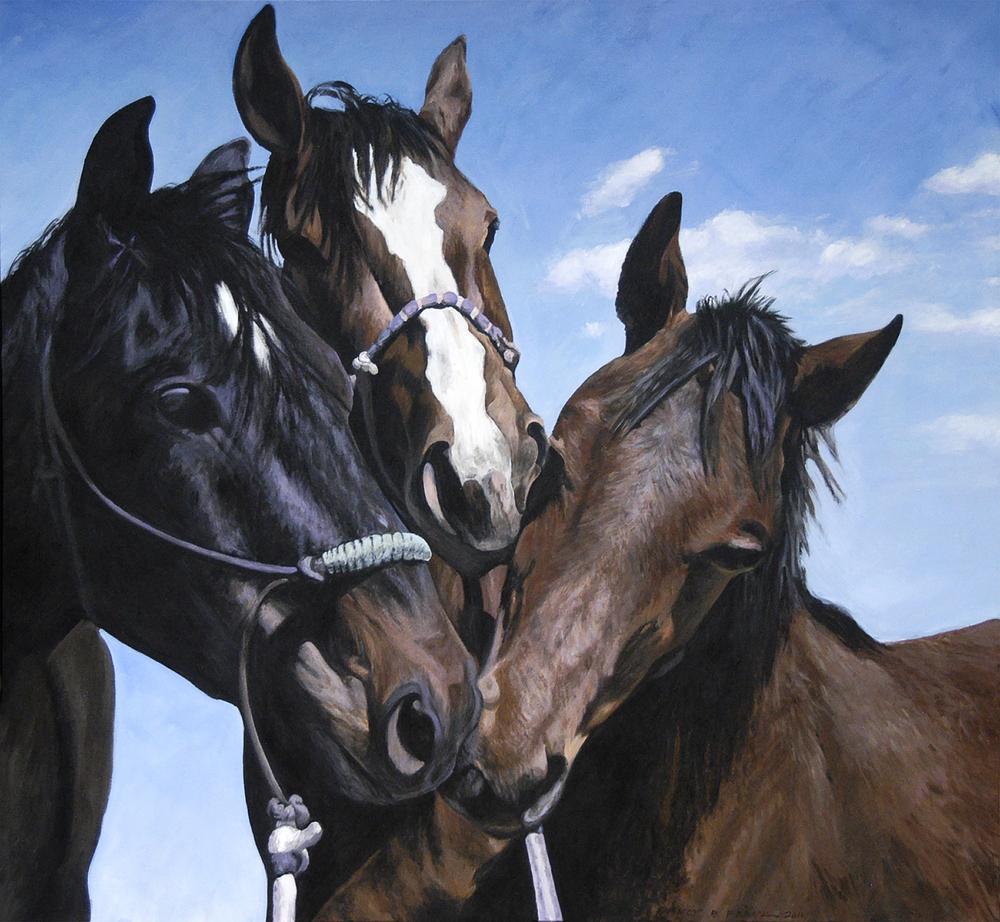Three Foals