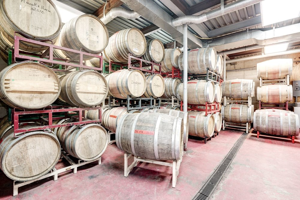 One of two barrel rooms. French Oak barrels from Sansaud, TSO, Taransaud, and Sequin Moreau.