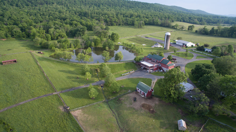 Aerial view of winery, tasting room, equipment storage barn, and stable.