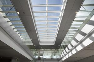 Ridgelight with beam 5˚