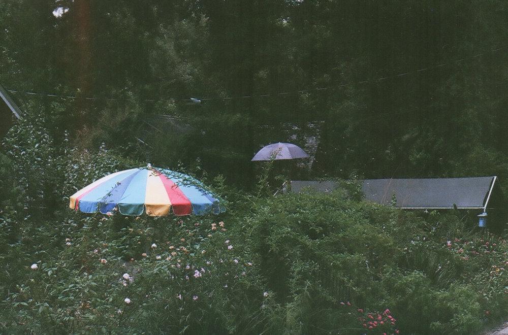 1_felice_umbrella in passing.jpeg