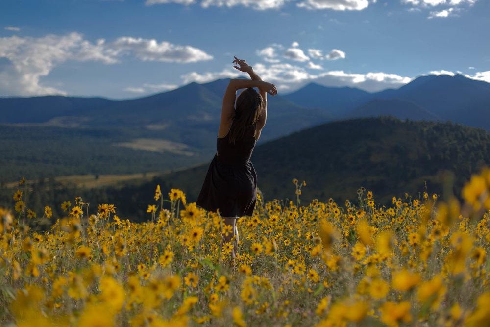 2016_08_31_Flagstaff Flowers_5DMMK3_STILLS_0289.jpg