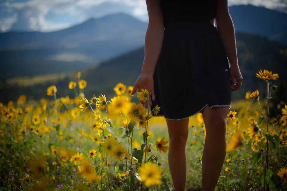 2016_08_31_Flagstaff Flowers_5DMMK3_STILLS_0059.jpg