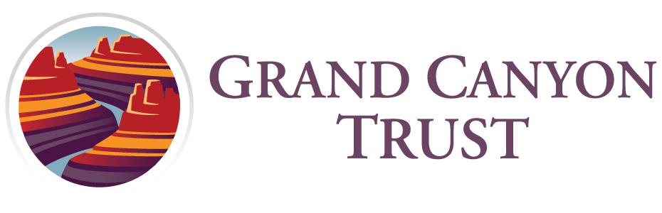 GCT_Logo_Horz_GIS.png