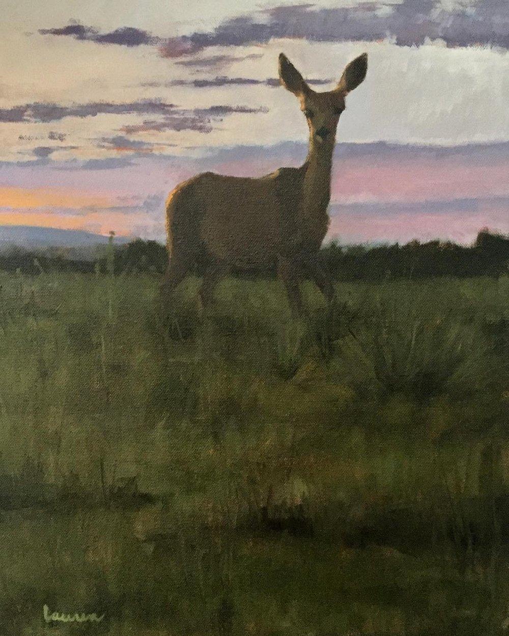 """""""Doe at Dusk"""" 14x18 oil on canvas 2018"""
