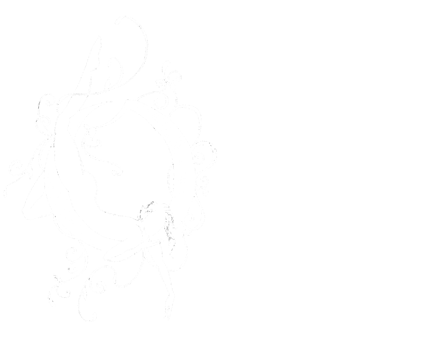 Only Child Aerial Theatre