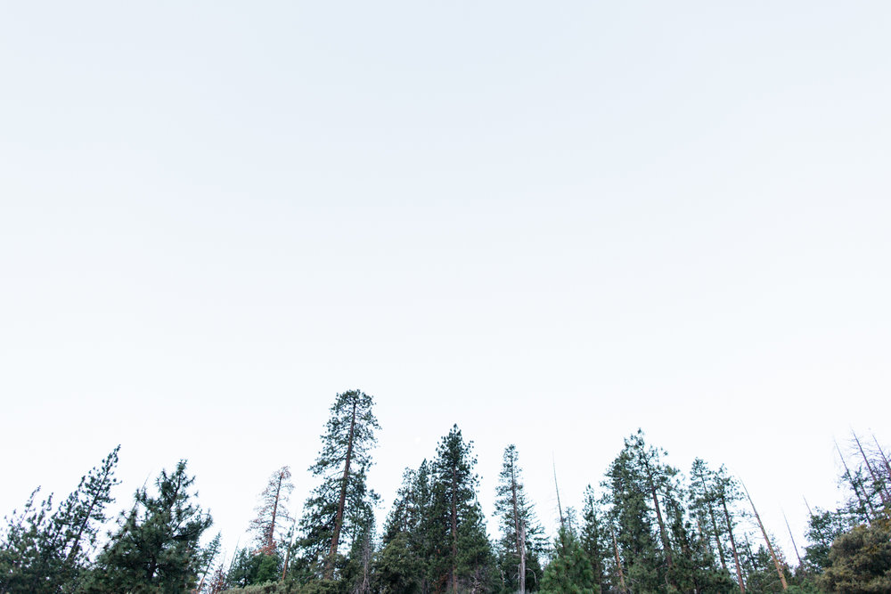 SamErica Studios - Yosemite Adventure-7.jpg