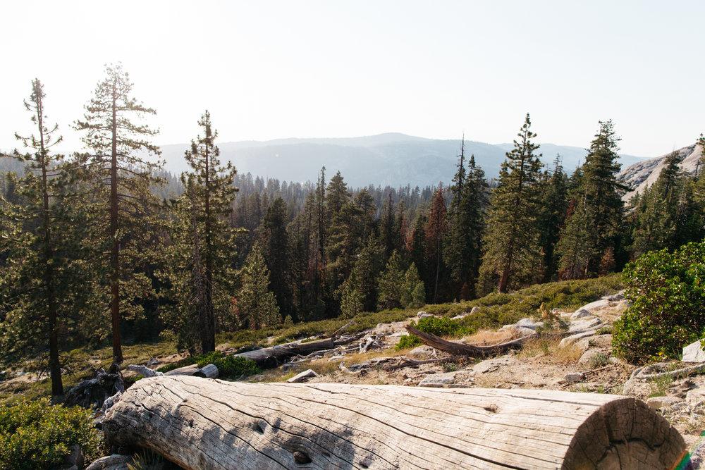 SamErica Studios - Yosemite Adventure-22.jpg