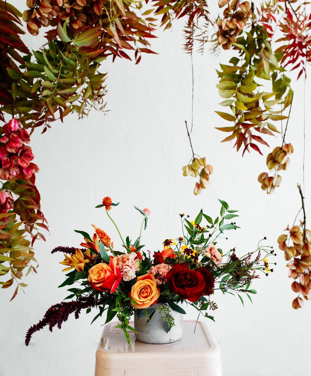 SamErica Studios - Native Poppy-119.jpg