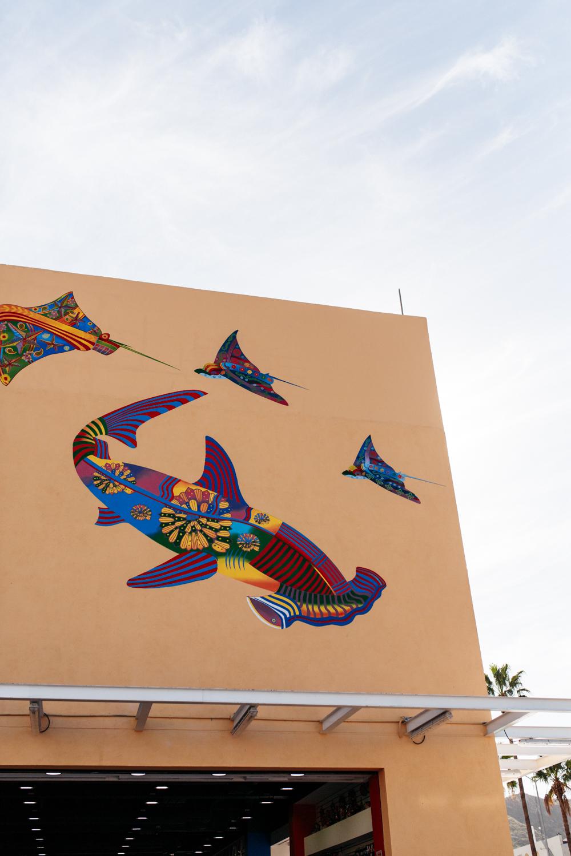 SamErica Studios in Cabo-18.jpg