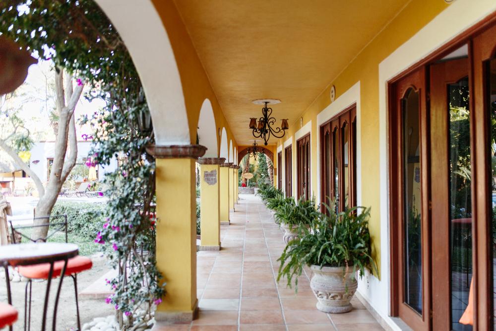 SamErica Studios in Cabo-97.jpg