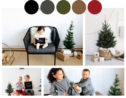details - + 15 minute session+ 25 digitals+ 25 -5 x 7 holiday cards with envelopes+ Pom Pom garland to take home!