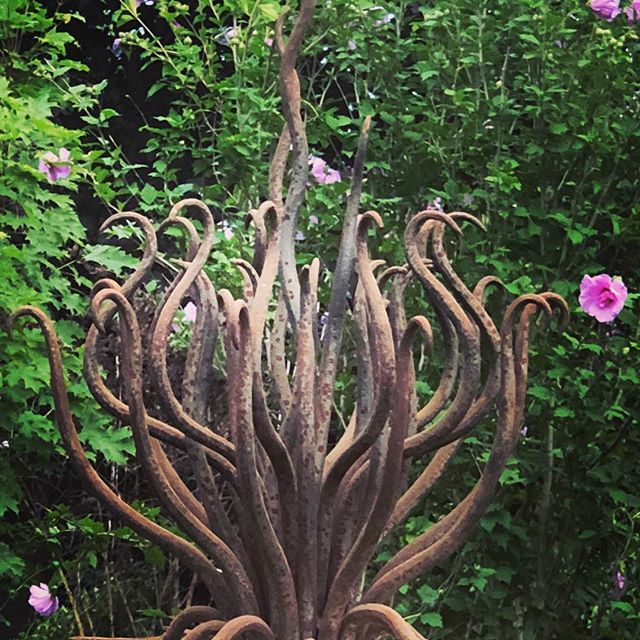 Kraken in the garden. #blacksmith #handforged #gardensculpture