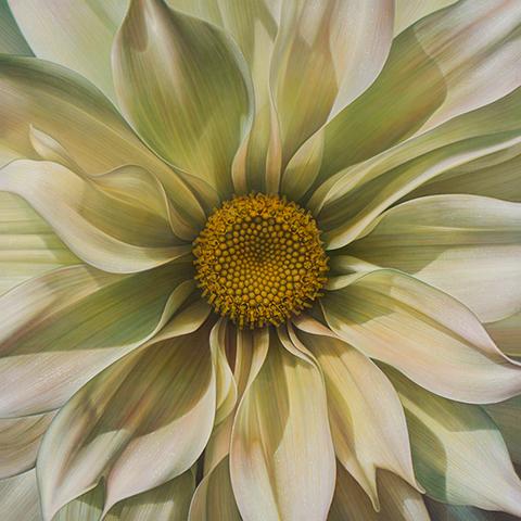 Flower Series #21