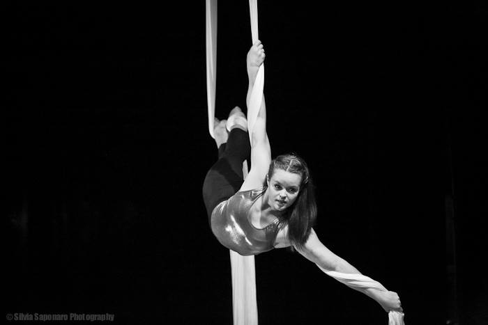 LuLu on silks.jpg