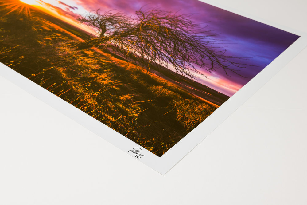 Photo Paper - Photo paper is great for those who want a customizable option to suit their framing taste. Photo paper offers a very dynamic presentation with beautiful color and detail reproduction.