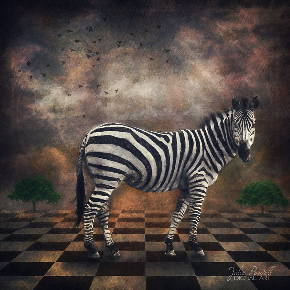 Julie Powell_ZebraTime.jpg