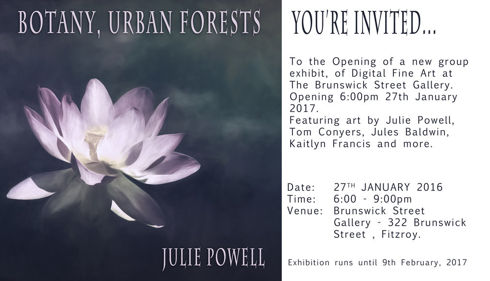 The exhibition runs from 27th January to 9th February 2017..........I hope to see you there ~ Julie