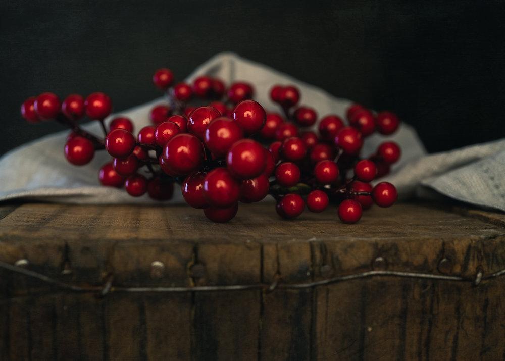 Julie Powell_Dark & Moody-29.jpg