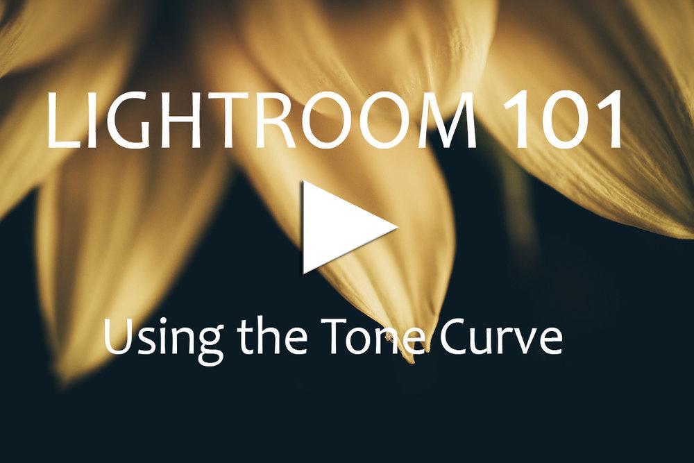Tone Curve.jpg