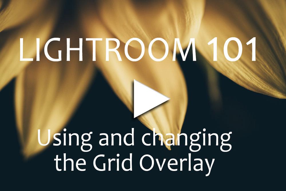 Lightroom 101 _Overlay Grid.jpg