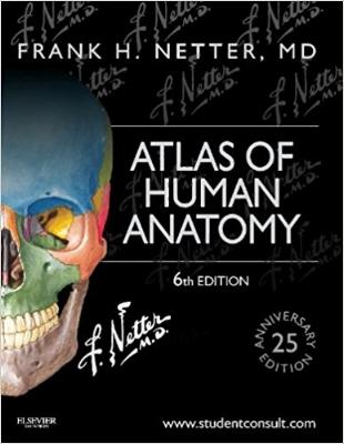 Atlas of Human Anatomy.jpg