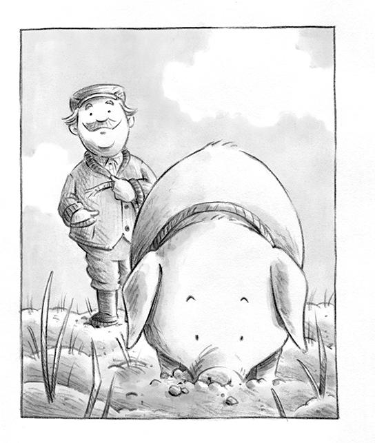 Truffle Pig_1.jpg