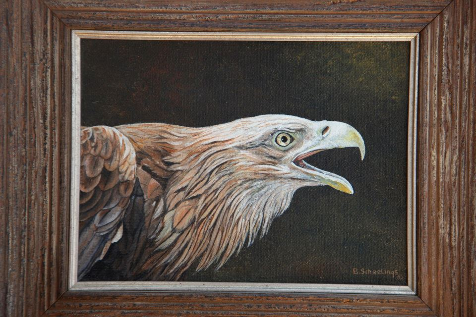 bald-eagle-oil-on-canvas.jpg