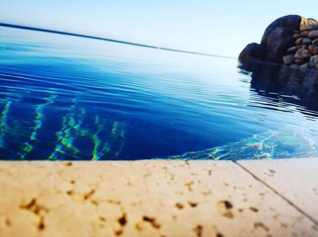 cabo san lucas vegan beach vacation