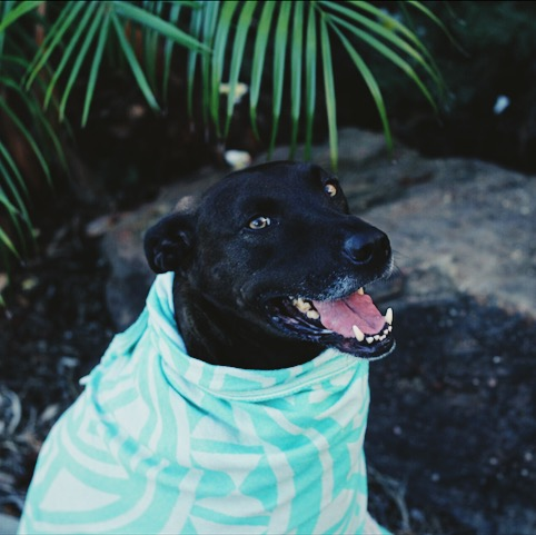 asher in a sandcloud towel