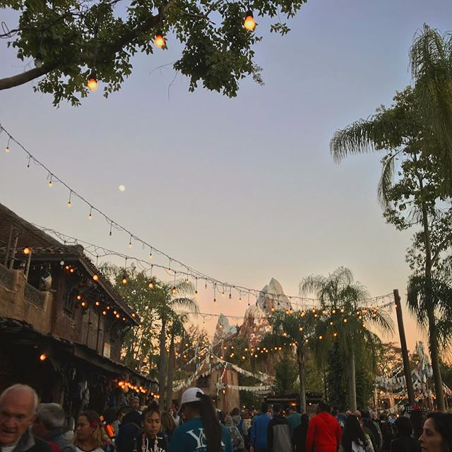 🌕over🏔 . . . . . . . #disney #animalkingdom #disneyworld
