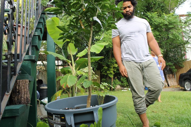 Black People with Plants_Collection of Collections_New Orleans_Nathianel + McNally.jpg