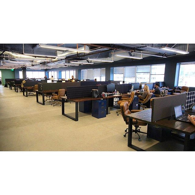 Rows and rows of custom workstations for Oxford Rd. Agency #office #design #hollywood
