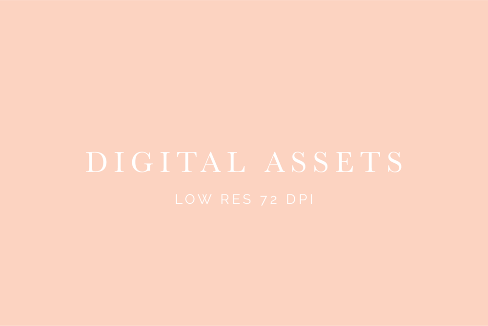 Digital Assets low res 72 dpi