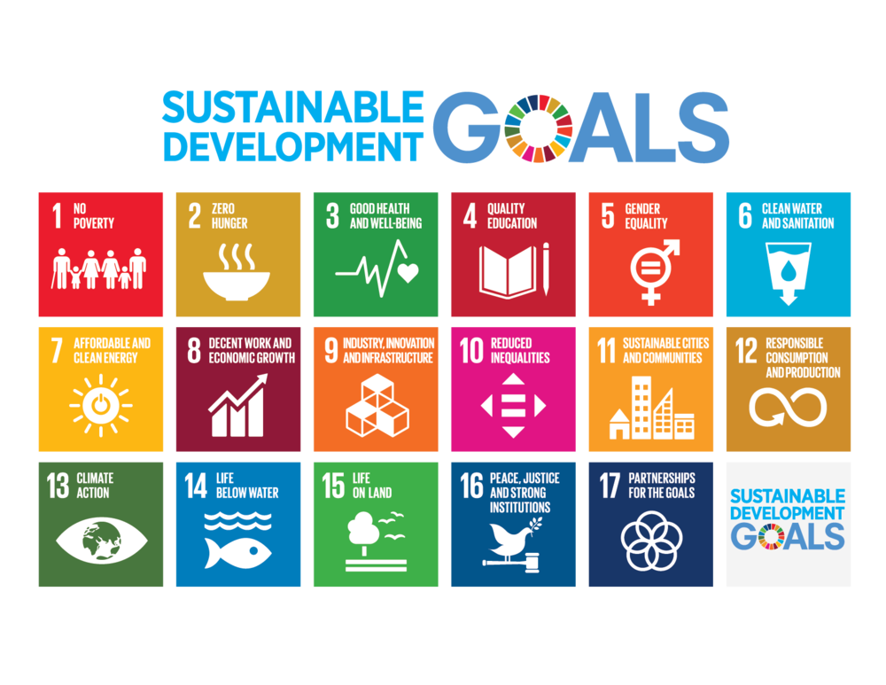 The UN Sustainable Development Goals (SDGs)
