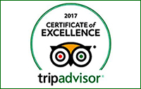 tripadvisor-badge-award.jpg
