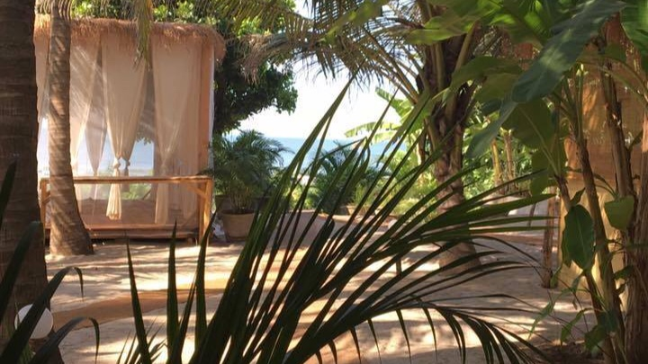palmgroveshala5.jpg