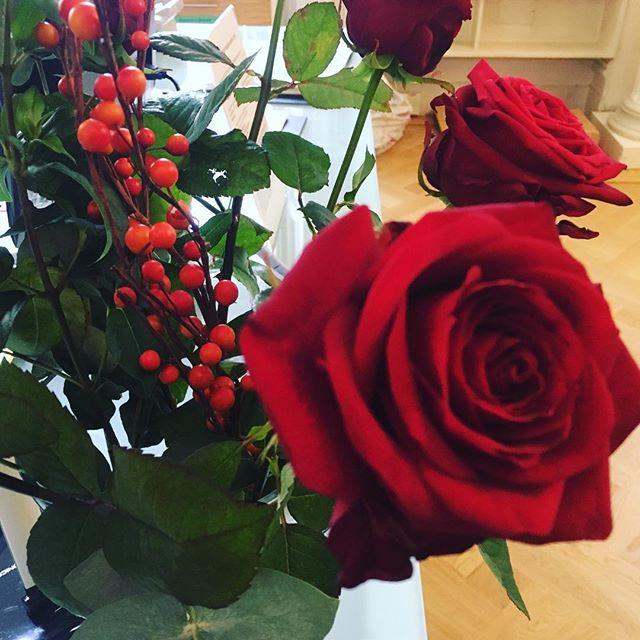 Christmas roses 🌹🎄