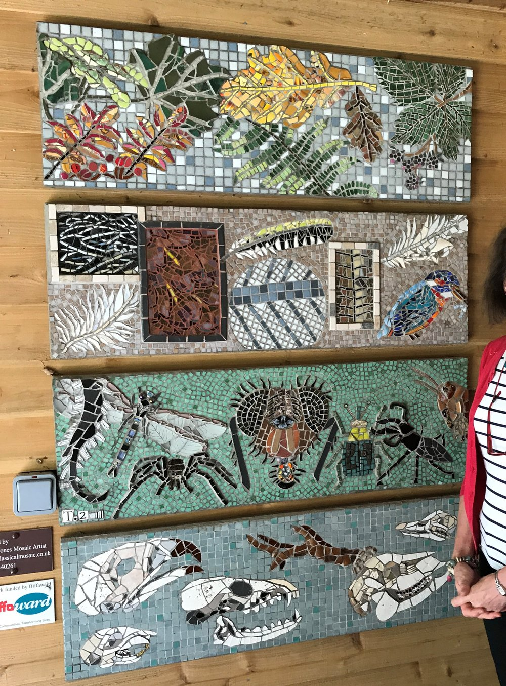 """Biodoversity"" mosaic at the Wyre Forest Visitors Centre, Bewdley."