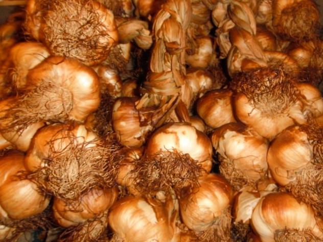 Smoked garlic from The Garlic Farm - fragrant bulbs of gustatory delight! RHS Harvest Festival, London