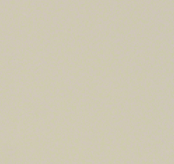 Ivory Gloss  - 22 x 1 mm